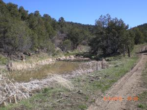 80 Acres with a camper, Trinidad, CO 81082