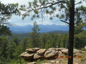360* VIEWS 31C Ridge RD, Weston, CO 81091