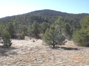 5851 FARVIEW VALLEY Rd, Trinidad, CO 81082