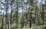 36030 Lodgepole Trace, F29, Trinidad, CO 81082