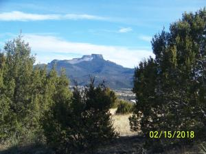 TBD County Road 67.7, Trinidad, CO 81082