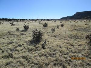 40 ac m/l Rancho Verde Tract-96, Trinidad, CO 81082