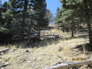 Spanish Peaks Ranch Filing 2, Lot #52, Gulnare, CO 81020