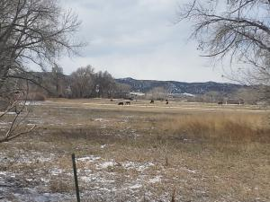 37001 County Rd 28.2, Trinidad, CO 81082