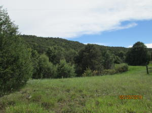Fisher Peak Ranch Lot 10 & 11, Trinidad, CO 81082