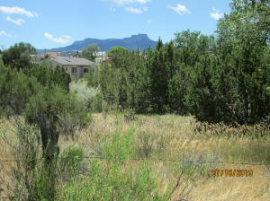 4.84 Acres Indiana St, Trinidad, CO 81082