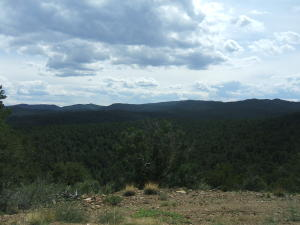 Big View Drive, 90, Trinidad, CO 81082