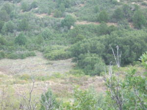 Big View Drive, 91, Trinidad, CO 81082