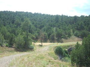Big View Drive, 86, Trinidad, CO 81082