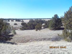 47 Pinon Canyon Ranch, Thatcher, CO 81082