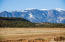 TBD Bondurant Rd, Colorado City, CO 81019