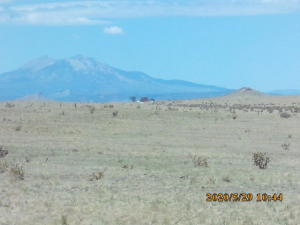 SFTR East Ranch 125, Tyrone, CO 81082