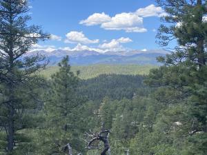 TBD Oxbow Trail, Weston, CO 81091