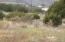 unassigned N Arch and Nevada, Trinidad, CO 81082
