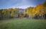 115 Francisco Way, Telluride, CO 81435