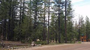 1010 N Pine Knoll LP, SCP 1-4-73, Duck Creek, UT 84762