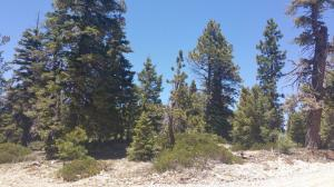 1030 W Cascade Dr., Duck Creek, Utah