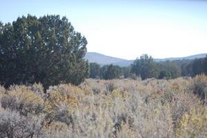 17.5 acres Holt Canyon Road
