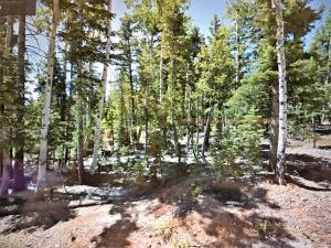 990 Empty Saddle, 36, Duck Creek, UT 84762