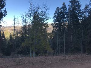 View from edge of lot on Aspen Dr.