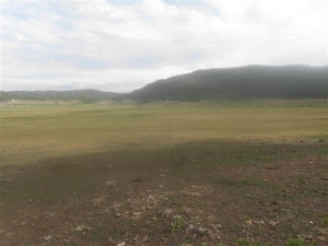 148 Acres adjoining Panguitch Lake, Panguitch, UT 84759