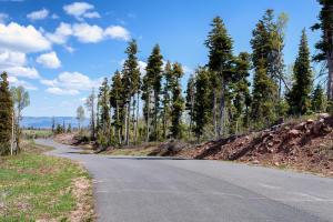 Whispering Pines RD, 76, Virgin, UT 84779