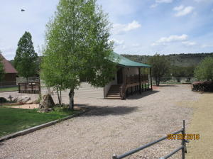 118 S Lloyd Canyon DR, Pine Valley, UT 84781