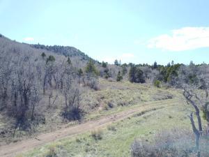 138 Acres on Kanarra Mountain, Kanarraville, UT 84742