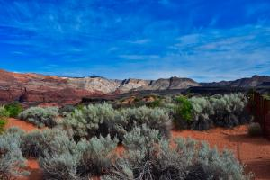 Unobstructed view of Snow Canyon State Park.
