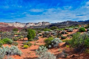 Perfect view of Snow Canyon State Park .