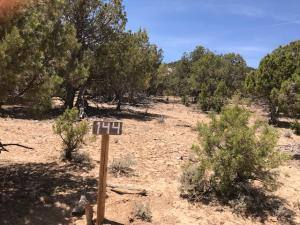 Cougar Canyon Lane, 144, Alton, UT 84710