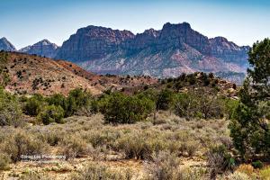 Anasazi Way, 43, Springdale, UT 84767