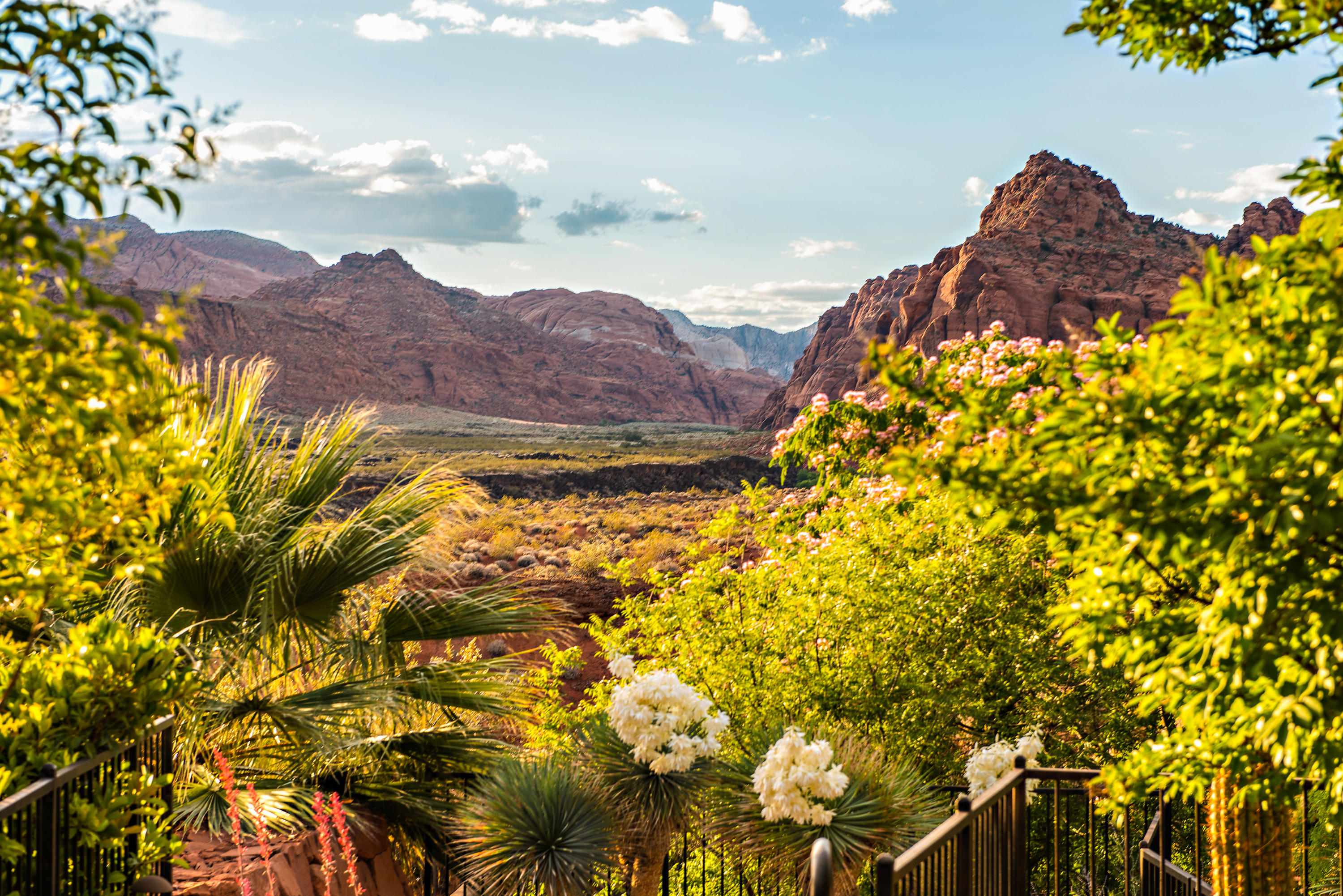 3052 N Snow Canyon Unit 77, St George Ut 84770