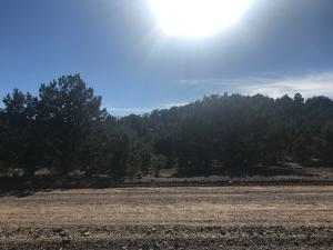 17983 W Granite LN, 5, Cedar City, UT 84720