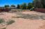 Unfinished backyard
