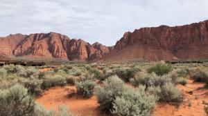 Views of Kayenta's Red Cliffs