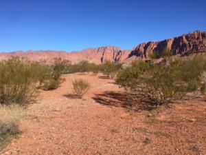 539 N Bur Sage Trail, Ivins, UT 84738