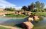 Neighborhood water feature