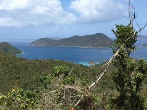 Views of Waterlemon Cay & the BVI's