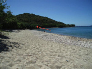 FLAT Beachfront