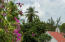 74-2 Cruz Bay Town, St John, VI 00830