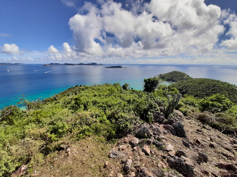 RE/MAX real estate, US Virgin Islands, Hansen Bay, Price Reduced  Land  Hansen Bay