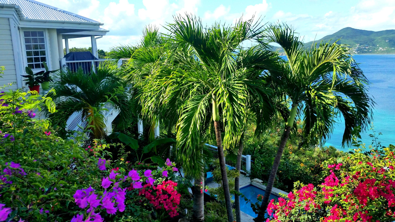 RE/MAX real estate, US Virgin Islands, Hansen Bay, Back on Market  Residential  Hansen Bay