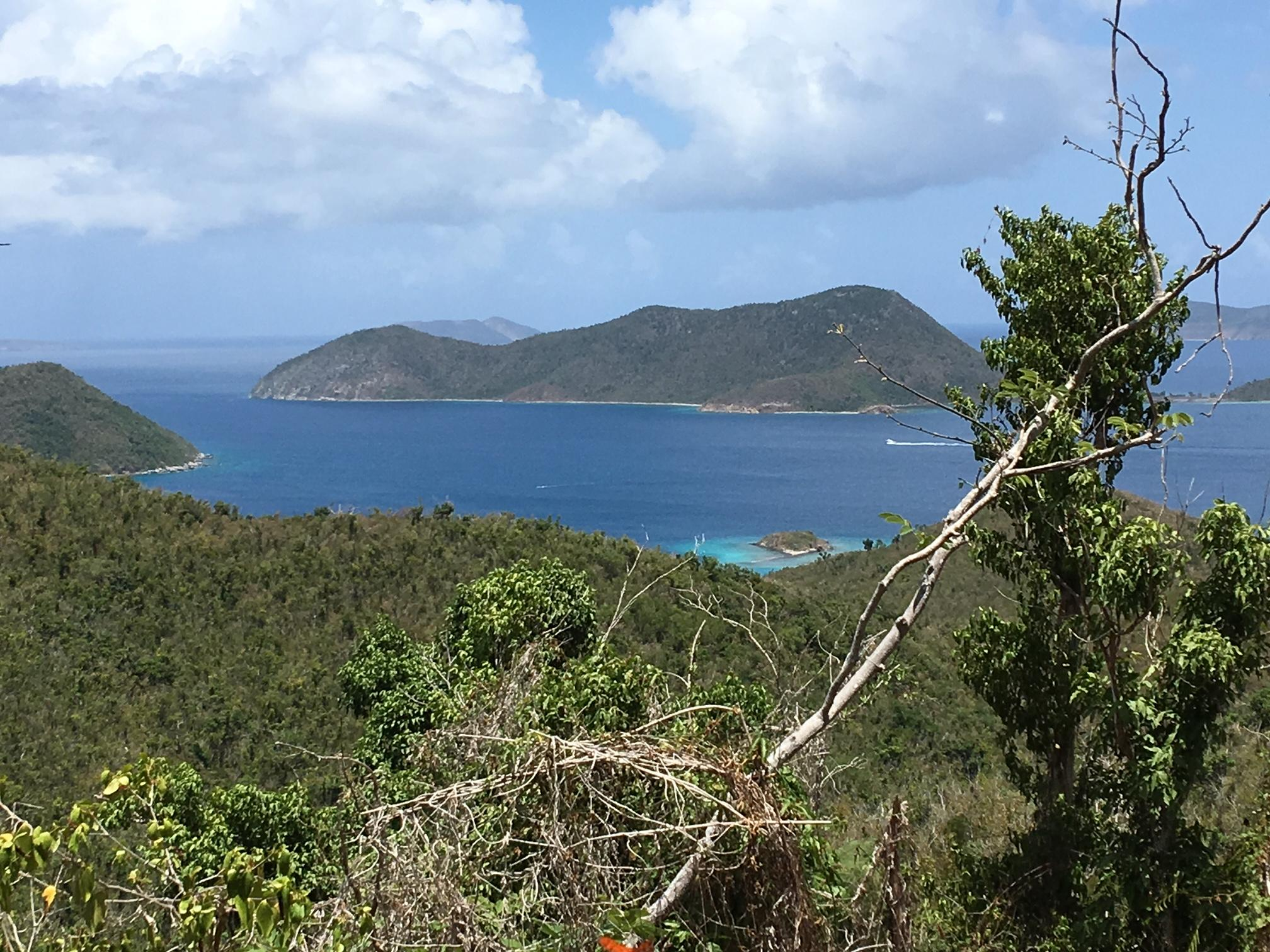 RE/MAX real estate, US Virgin Islands, Leinster Bay, New Listing  Land  Leinster Bay