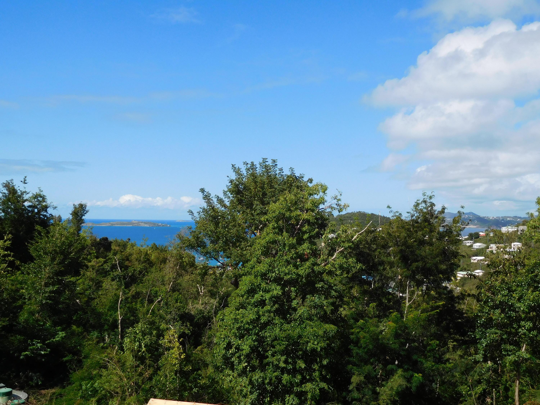 RE/MAX real estate, US Virgin Islands, Sans Soucci & Guinea Gut, Price Reduced  Land  Sans Soucci  Guinea Gut