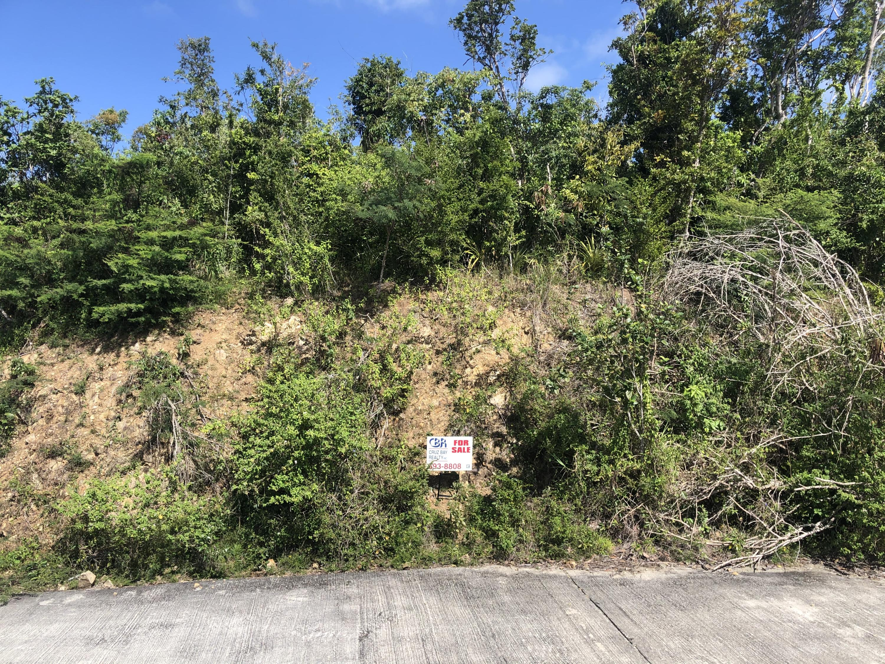 RE/MAX real estate, US Virgin Islands, Adrian, New Listing  Land  Adrian