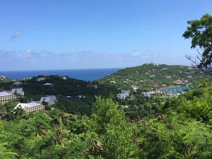 South Shore views of Great Cruz Bay & beyond