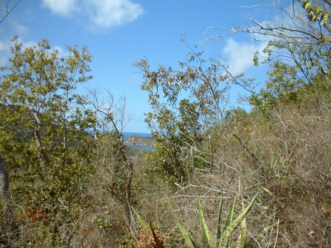 RE/MAX real estate, US Virgin Islands, Fish Bay, New Listing  Land  Fish Bay