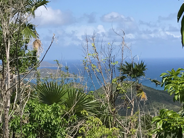 RE/MAX real estate, US Virgin Islands, Carolina, New Listing  Land  Carolina