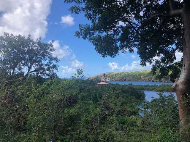 RE/MAX real estate, US Virgin Islands, Mandahl, New Listing  Land  Mandahl